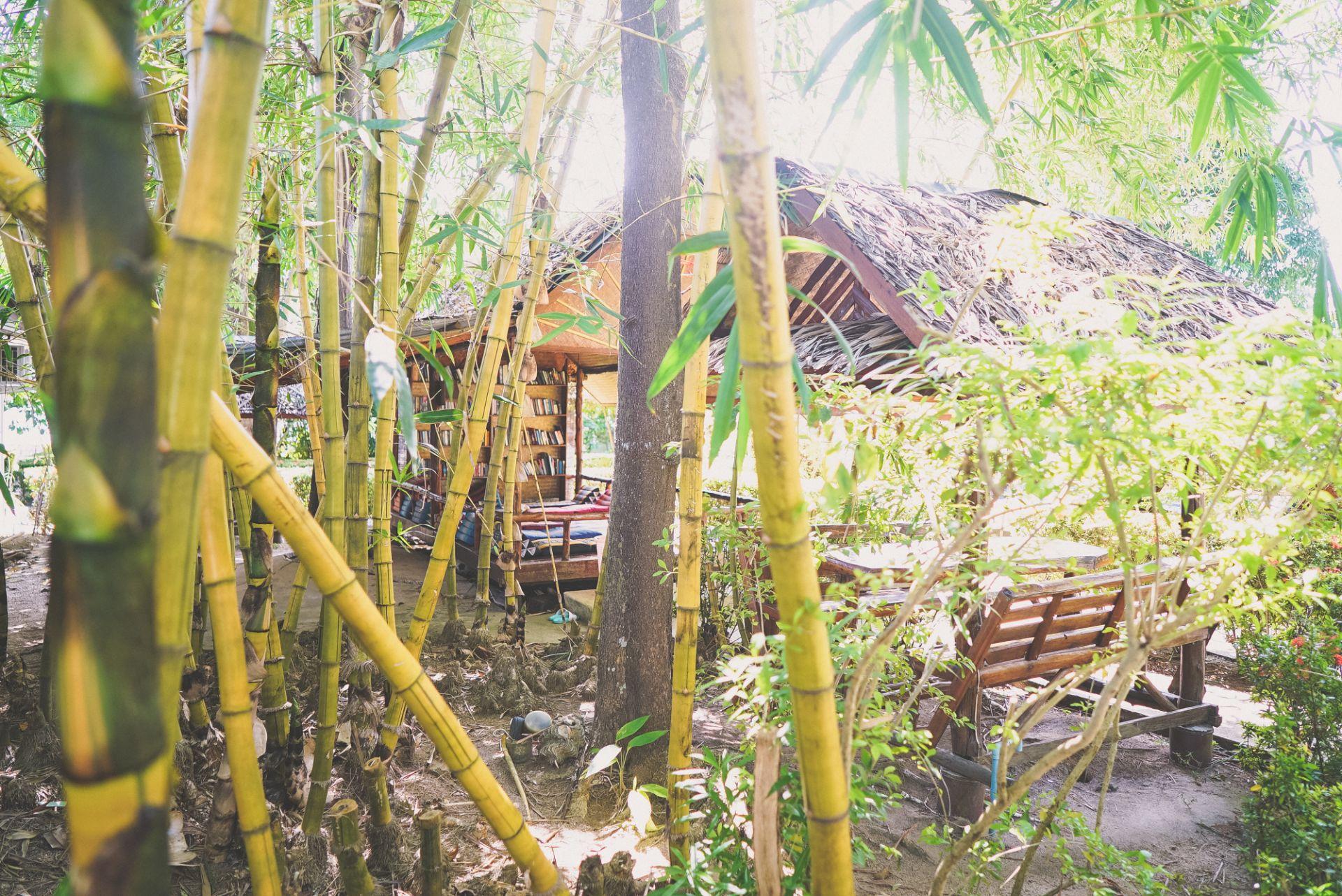 Thailand's nature