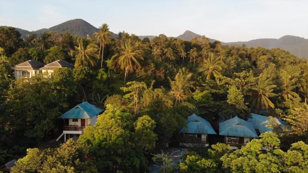 Drone view of Ananda Yoga and Detox Center