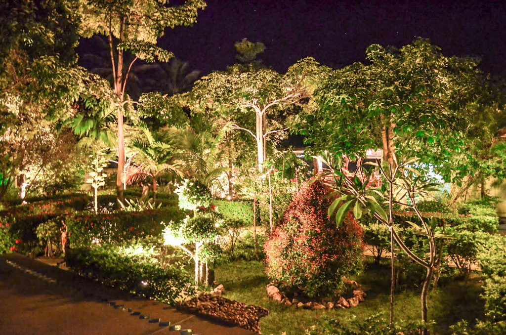 Nightview of our gardens